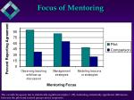focus of mentoring