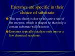 enzymes are specific in their choice of substrate