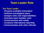 team leader role