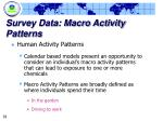 survey data macro activity patterns