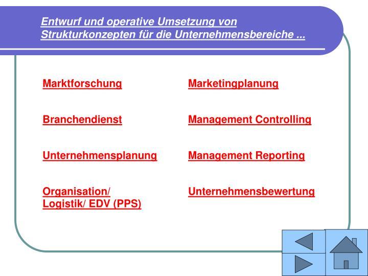 Entwurf und operative Umsetzung von Strukturkonzepten für die Unternehmensbereiche ...