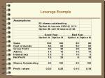 leverage example