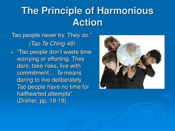 The Principle of Harmonious Action