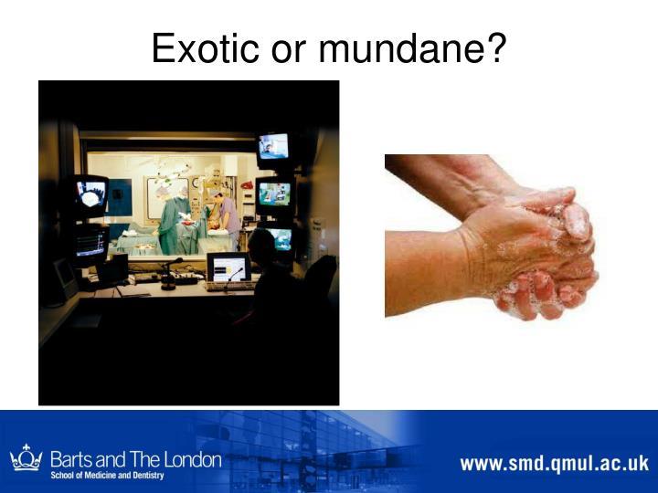 Exotic or mundane?