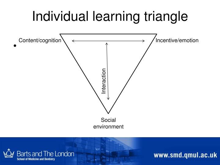 Individual learning triangle