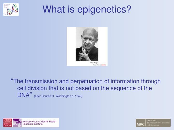 What is epigenetics