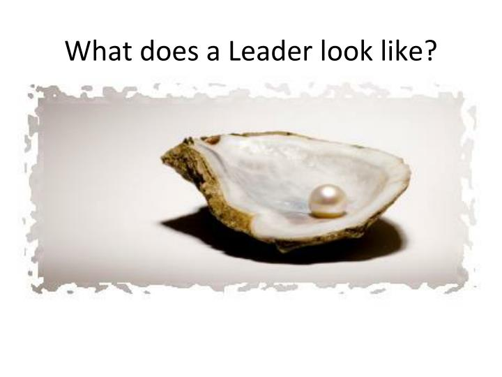 What does a leader look like