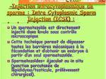 injection intracytoplasmique de sperme intra cytoplasmic sperm injection icsi