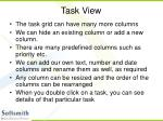 task view