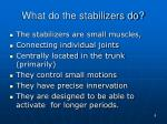 what do the stabilizers do