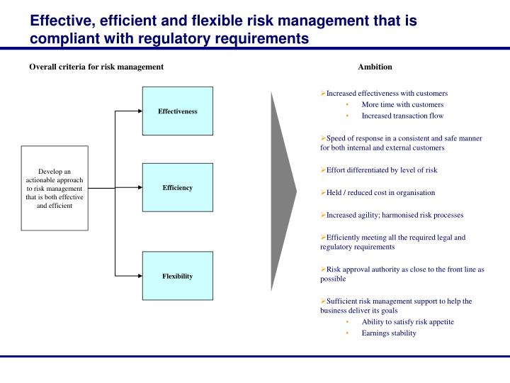 Effective, efficient and flexible risk management that is compliant with regulatory requirements