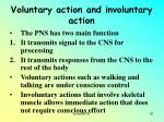voluntary action and involuntary action
