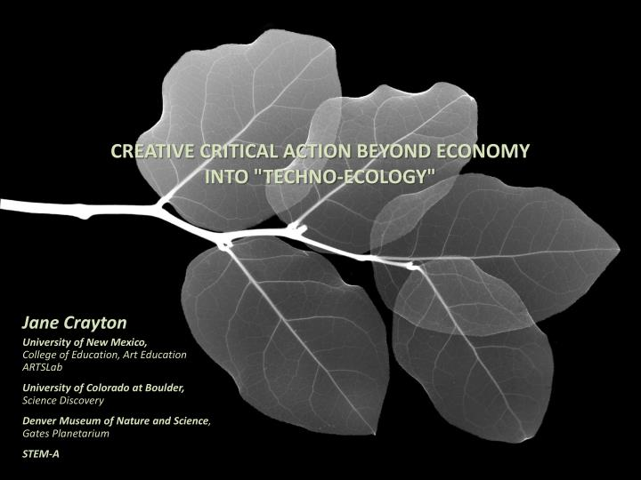 creative critical action beyond economy into techno ecology n.