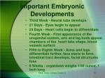 important embryonic developments
