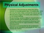 physical adjustments