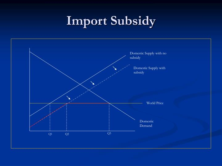 Import Subsidy