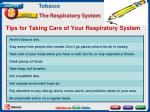 tips for taking care of your respiratory system