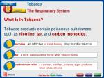 what is in tobacco