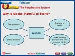 why is alcohol harmful to teens
