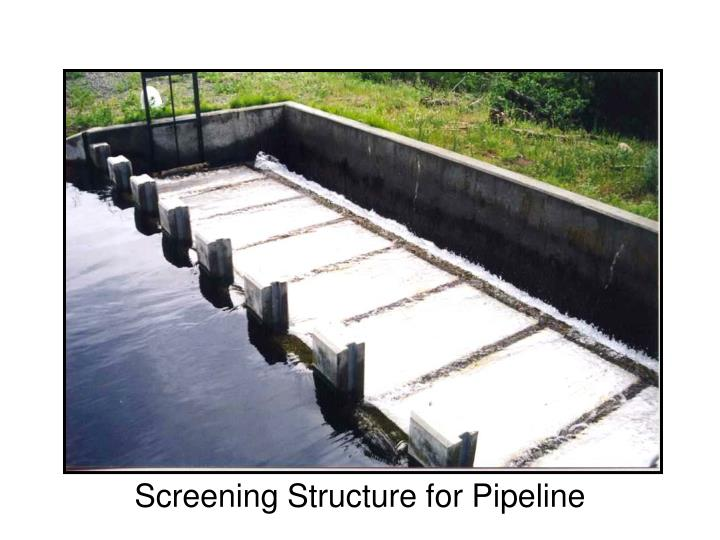 Screening Structure for Pipeline