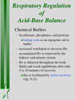 respiratory regulation of acid base balance