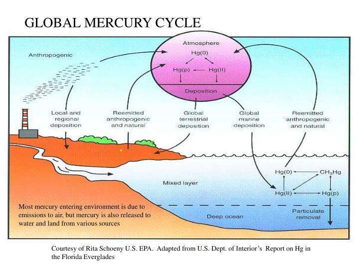 GLOBAL MERCURY CYCLE