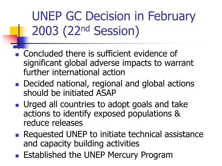 UNEP GC Decision in February 2003 (22