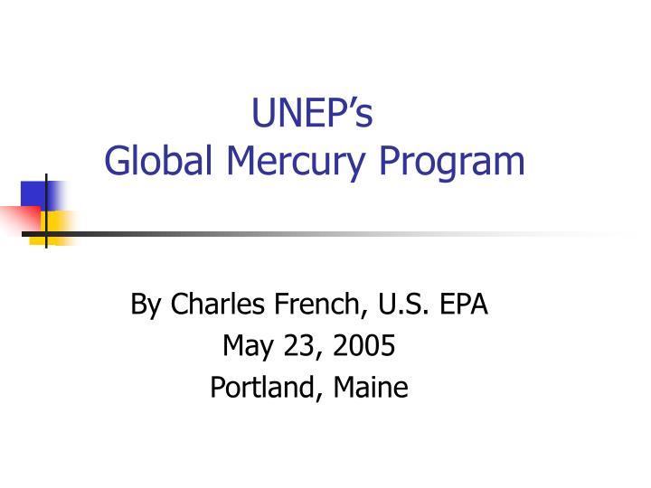 Unep s global mercury program