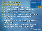 the net common language runtime