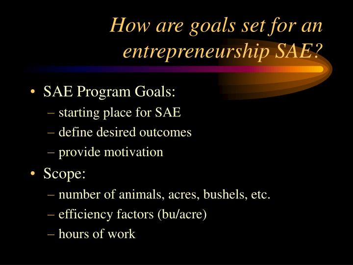 How are goals set for an entrepreneurship sae