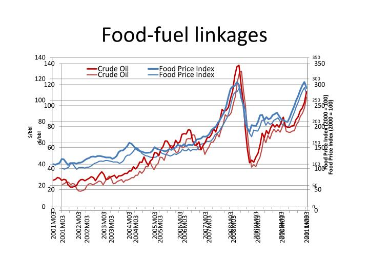 Food-fuel linkages