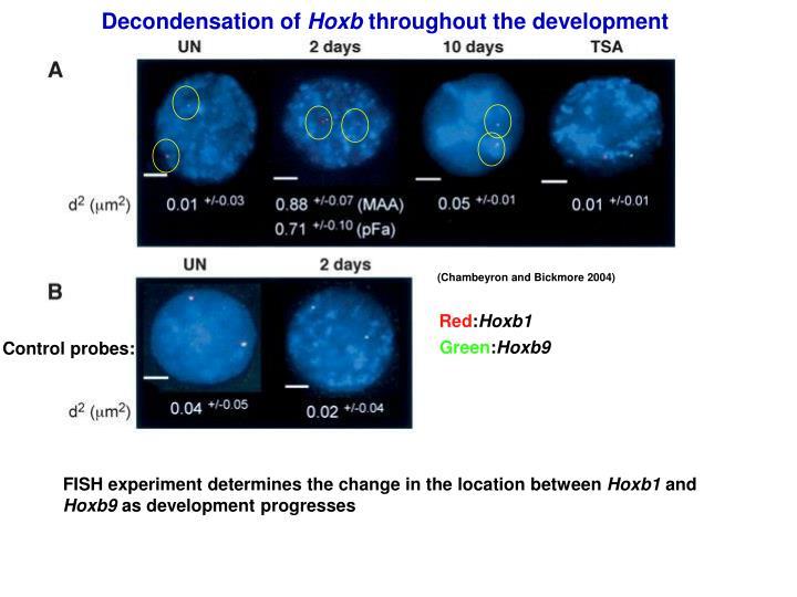 Decondensation of
