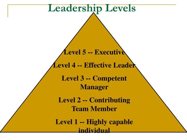 Leadership Levels