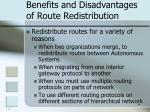 benefits and disadvantages of route redistribution