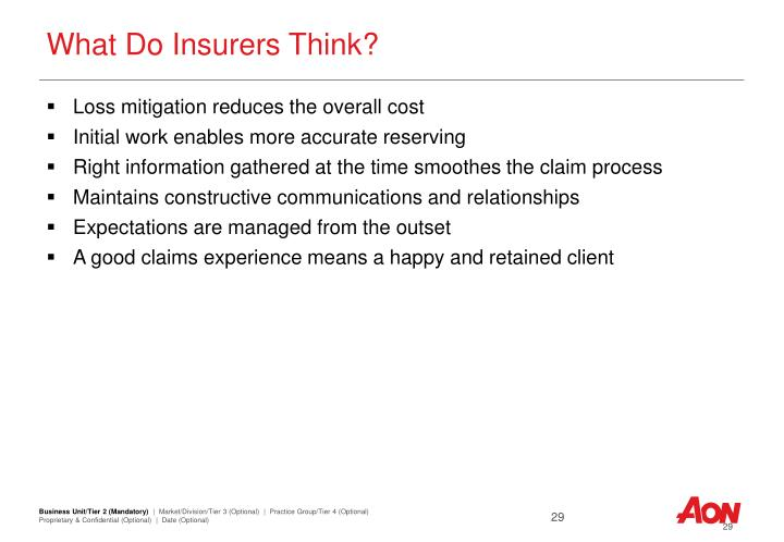 What Do Insurers Think?