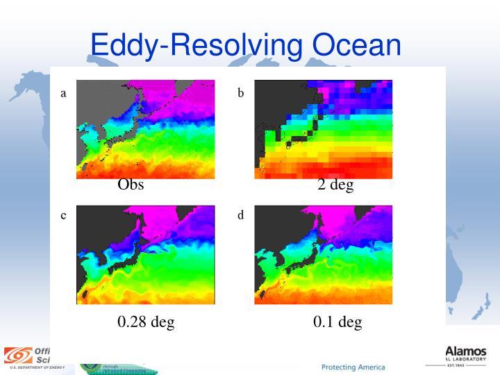 Eddy-Resolving Ocean