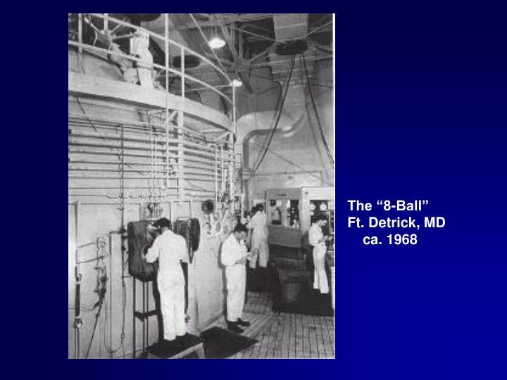 "The ""8-Ball"""