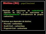 biotina b8 papel funcional
