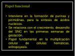papel funcional2