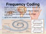 frequency coding