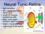 neural tunic retina