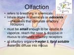 olfaction1