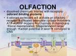 olfaction2