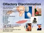 olfactory discrimination