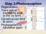 step 3 photoreception