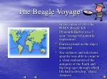 the beagle voyage
