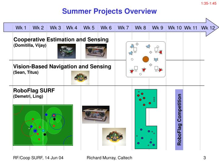 Summer projects overview