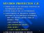 muchos proyectos c b