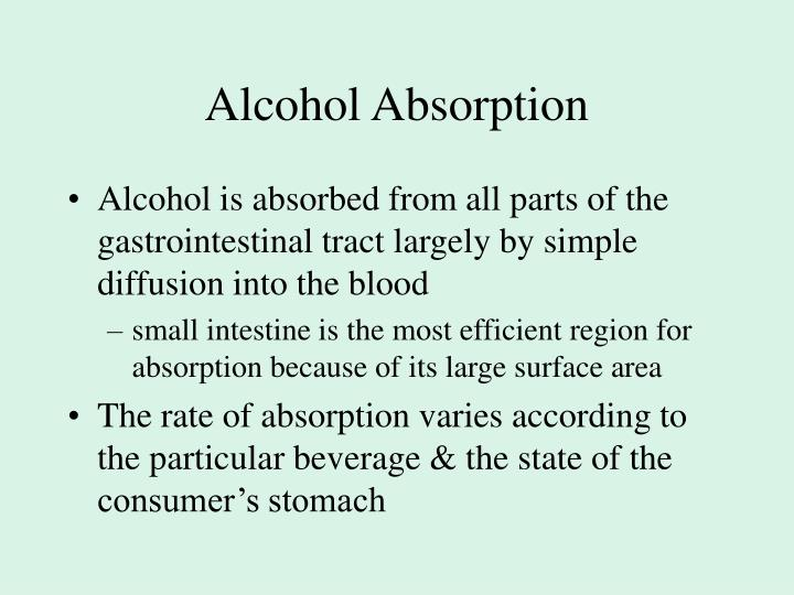 Alcohol Absorption