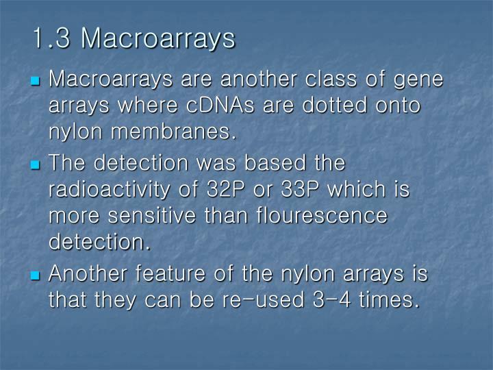 1.3 Macroarrays